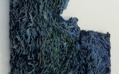 Gérard Eli illustre deux « feuilles de céramique »